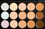 15 Colour Professional Concealer Palette