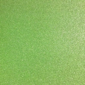 TooMeeCrafts 28cm by 20cm Glitter Cardstock Bright Green Colour,Pack of 10