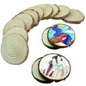 Unfinished Natural Wood Slices – Yookat 10 Pcs Wood Slices Log Slices for DIY Crafts Making