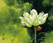 DIY Oil Painting for Adults Kids Paint By Number Kit Digital Oil Painting Lotus Flower 41cm X 50cm