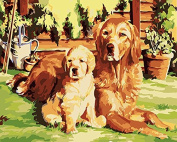 DIY Oil Painting for Adults Kids Paint By Number Kit Digital Oil Painting Cute Puppy Dog 41cm X 50cm