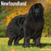 Newfoundland Calendar 2018