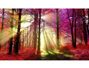 Fipart DIY diamond painting cross stitch craft kit,Wall stickers for living room decoration, wood