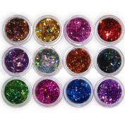 Shineweb 12pcs 12 Colours Nail Art Acrylic 3D Rhombus Glitter Shape Sequins Powder Set
