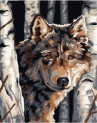 Prime Leader Wooden Framed Diy Oil Painting, Paint by Number Kit 41cm x 50cm Wolf 2