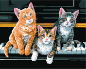 Prime Leader Wooden Framed Diy Oil Painting, Paint by Number Kit 41cm x 50cm piano and kitten