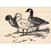 Ducks on Lake Bank Rubber Stamp