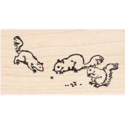Squirrels Rubber Stamp