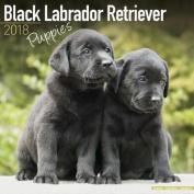 Black Labrador Retriever Puppies Calendar 2018