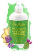 African Water Mint & Ginger Detox & Refresh Hair & Scalp Conditioner