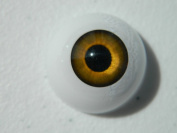 Pair of Realistic Life Size Acrylic Half Round Hollow Back Eyes for Halloween PROPS, MASKS, DOLLS or Bears FE01