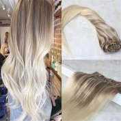HairDancing 60cm 7Pcs 120g Remy Hair Clip Extensions Human Hair Extensions Dip Dyed Clip in Balayage Hair Colour #10 and #613 Blonde to #613 Highlighted Clip In Hair Extensions