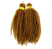 RastAfri Malibu Afro Kinky Braid 46cm #27