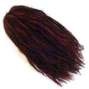 RastAfri Malibu Afro Kinky Braid 46cm -HM 1B/BG