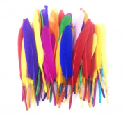 Honbay 200pcs Assorted Colour Handmade Decoration Feather