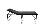 Portable Massage Table Metal Adjustable Back Rest Free Carrying Case