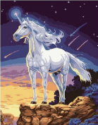 DIY Oil Painting for Adults Kids Paint By Number Kit Digital Oil Painting Unicorn 41cm x 50cm