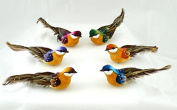 Package of 12 Assorted Colour Fancy Feathered Tail Sparrow Mushroom Birds with Attached Clips