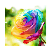 Blxecky 5D DIY Diamond Painting Crafts Kits,Rainbow Rose(36cm X 36cm )
