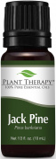 Plant Therapy Jack Pine Essential Oil. 100% Pure, Undiluted, Therapeutic Grade. 10 Ml (1/3 Oz).