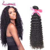 Lin Hair Virgin Brazilian Curly Human Hair Bundles Can Be Dyed 100 Real Human Hair Extensions