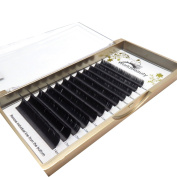Matte Black Ellipse Flat Eyelash Extension 0.20mm Thickness D curl 8MM to 14MM Mix Length 1Tray for Professional Salon Use