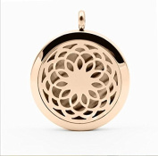 Feel Fragrance Aromatherapy Essential oil Diffuser Necklace locket with 316L Surgical Steel 60cm Chain and 8 Refill Pads For Aroma Pendant Jewellery