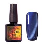 Arte Clavo Magnetic Cat Eye Lacquer Soak Off UV Led Varnish Gel Nail Polish Silver Thread 10ml Blue Colour 6001