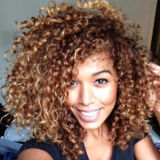 AISI HAIR Afro Kinky Curly Hair Wig Two Tone Wig Brown and Blonde Wigs Short Hair Wigs for Black Women