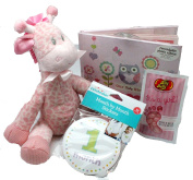 Girls Gift Budget Baby Shower Gifts or New Baby Girl Gift Basket - 4 Pc With Plush Giraffe, Recordable Photo Album, Month Stickers & Treat For Mom