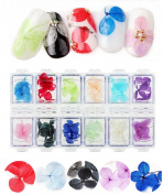 Wehous 2 Packs Nail Art Dry True Flower Nail Stickers Decoration 3D Kit