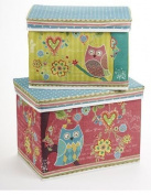 CLEARANCE 25cm - 37cm Owl 2 Pcs Storage Boxes
