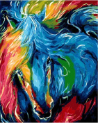 Dorara DIY Oil Painting Paint By Number Hand Paintworks 16×50cm Horse