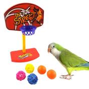 Parrot Toy, Pet Birds Chew Parakeet Bell Balls Parrot Toys Birdie Basketball Hoop Prop