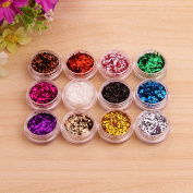 AllRight 12 Colours Glitter Dust Powder Pots Set Nail Art Tips Makeup Decoration / Crafts / DIY