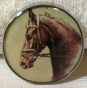 Fine Art Horse Snap YOUNG RACE HORSE 18-20MM Great Horse Item! SOME WITH BUBBLES!