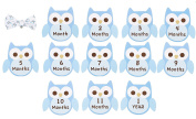 The Perfect Picture Bow Tie and 12 Month Sticker Set, Owl