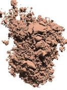 Radiant Powder Foundation SPF 23 Compact Refill10ml O40