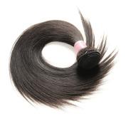 Virgin Brazilian Remy Silk Straight Unprocessed Human Hair Extensions Black 1B