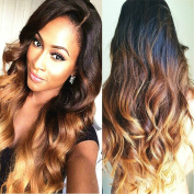 Obzer USA® Long Wigs Cosplay wigs Ombre wig hair extensions Synthetic Wig High Quality Wig with Free Wig Cap