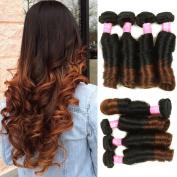 Mink Hair Brazilian Ombre Spring Curl Hair Bundles (12 14 16 18) Grade 8A Virgin Spring Curly Funmi Hair Extension 100g/bundle Two Tone Ombre Colour 1b/4#