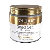 Ann Chery Beauty Dead Sea Mud Mask for facial treatment, 250 gr / 260ml