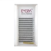 EMEDA 3D W 0.07 C Curl 14MM Volume Cluster Eyelash Extension False Eyelashes