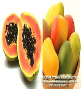 PAPAYA MANGO Fragrance Oil - Fresh from the tropics sweet mangoes and papaya, clean and enticing - By Oakland Gardens