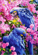 ESOOR 5D DIY Diamond Painting, Cross Stitch DIY Diamond Painting Kits Arts Two Parrots 30cm X 41cm