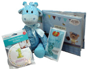 Budget Baby Shower Gifts For Boys or New Baby Boy Gift Basket - 4 Pc With Plush Giraffe, Recordable Photo Album, Month Stickers & Treat For Mom