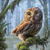 UHBGT Full Drill Owl 3D DIY Artificial Diamond Embroidery Cross Stitch Painting Décor