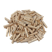 Tenn Well Wooden Clothespins, 100PCS Multi-function Mini Craft Clothespins, DIY for Room, Christmas, Party Decoration, School and Clothes