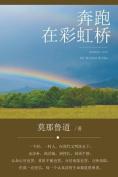 Journey Over the Rainbow Bridge [CHI]
