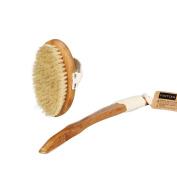 Fantcen Bristle Body Dry Brush with Detachable Handle